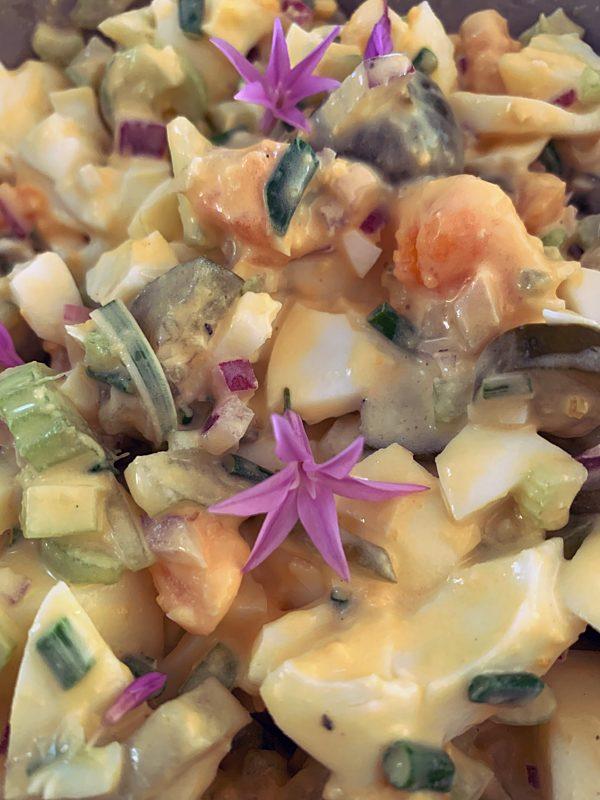 Egg Salad CU P Tenina