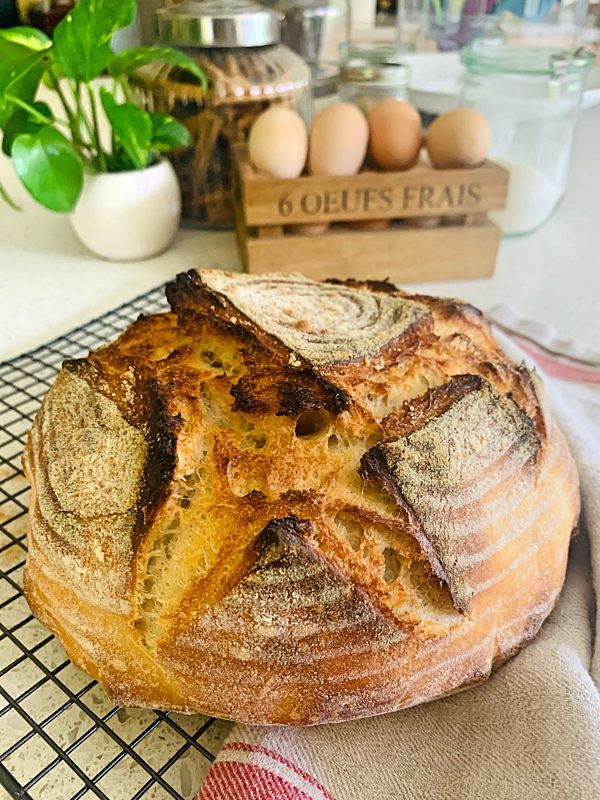 Lazy Sourdough Loaf 1 P Thermomix