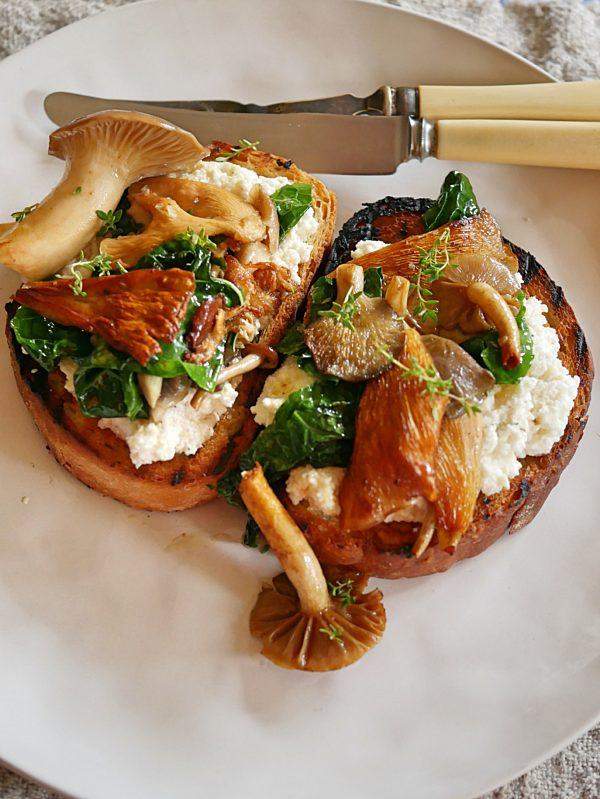 Musrooms on Ricotta Toast P TENINA